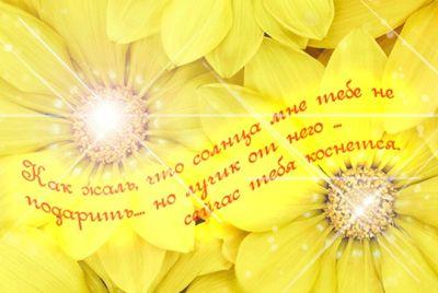 стихи Алевтине